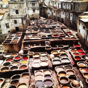 Tannery of Morocco